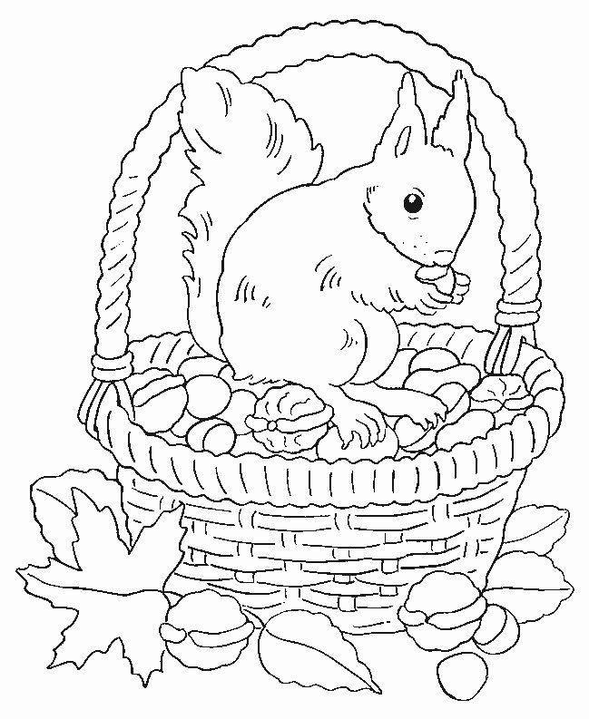 malvorlage herbst eichhörnchen 6