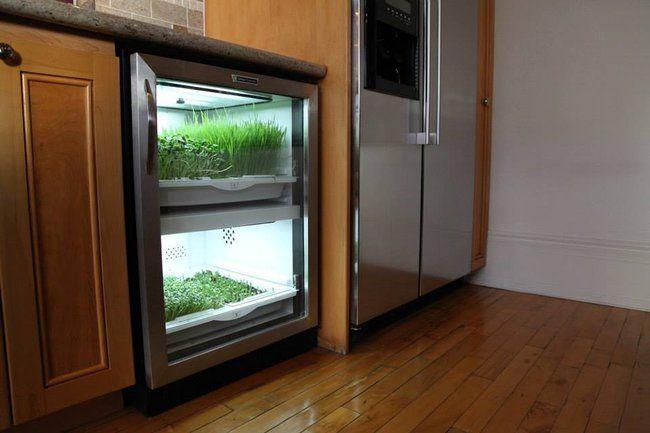 Automated Undercounter Garden Promises Zero Mile Micro 400 x 300