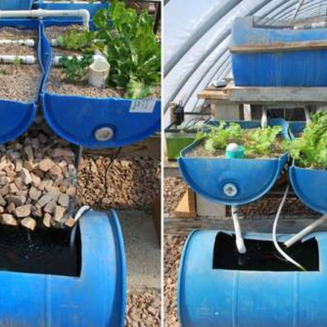 This Low-cost Vertical Aquaponic System Can Grow Leafy