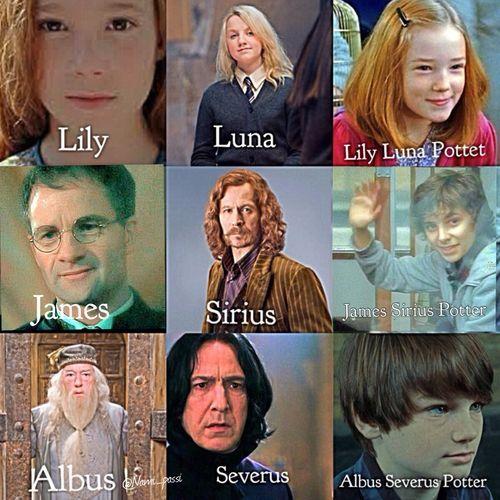 Bilderesultat For Harry Potter Albus Severus And Portrait Albus Severus Potter Harry Potter Cast Harry Potter Esprileri