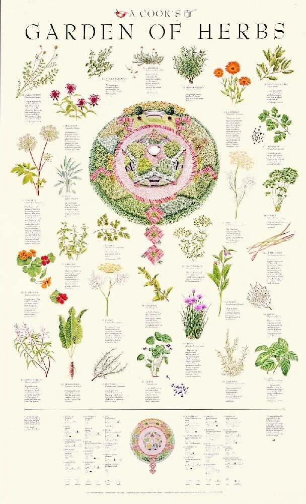 Posters - A Cook's Garden of Herbs Poster I own it and now it will ...