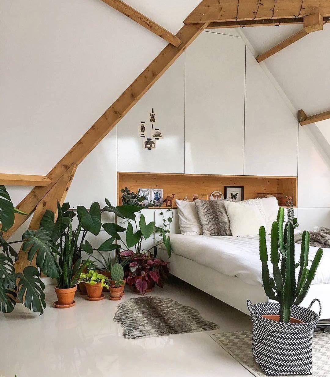 bedroom plants bedroom plants Interiores