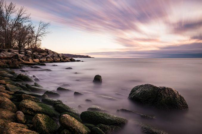 Ashbridges Bay by Steve McCaffrey