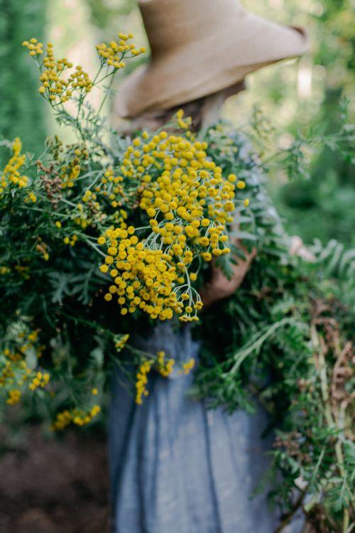 Pin Von Courtney Hardy Auf Spring | Pinterest | Gärten, Blume Und Mond Schnittblumen Frische Strause Garten