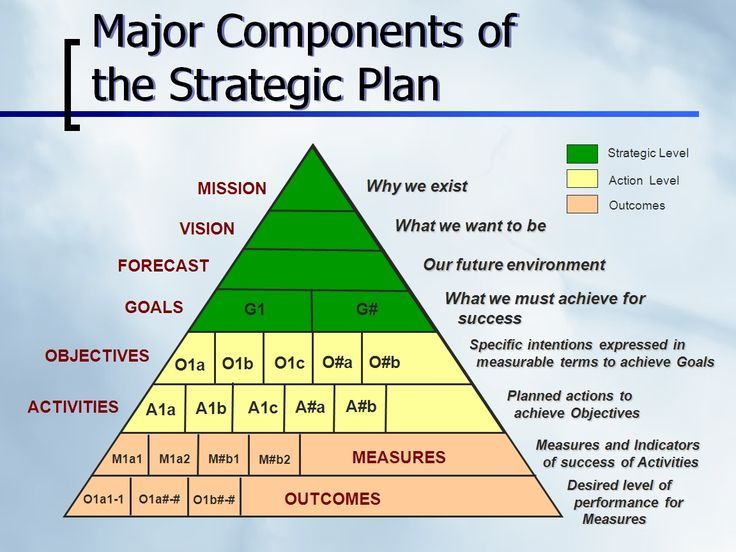 Major Components of the Strategic Plan from Mission to