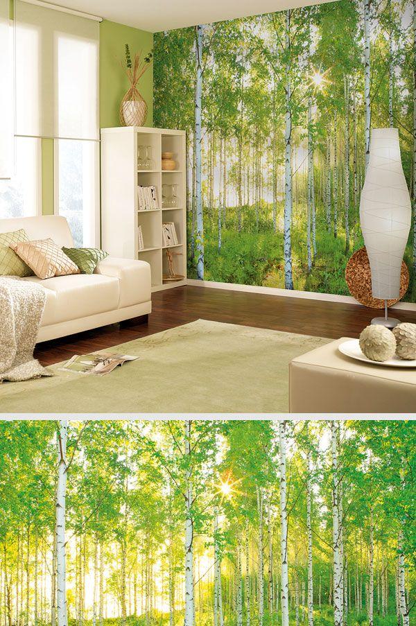 Fototapete VOL 15 Papier Sunday 368 x 254 cm Fototapete, Wald - wandbilder wohnzimmer grun