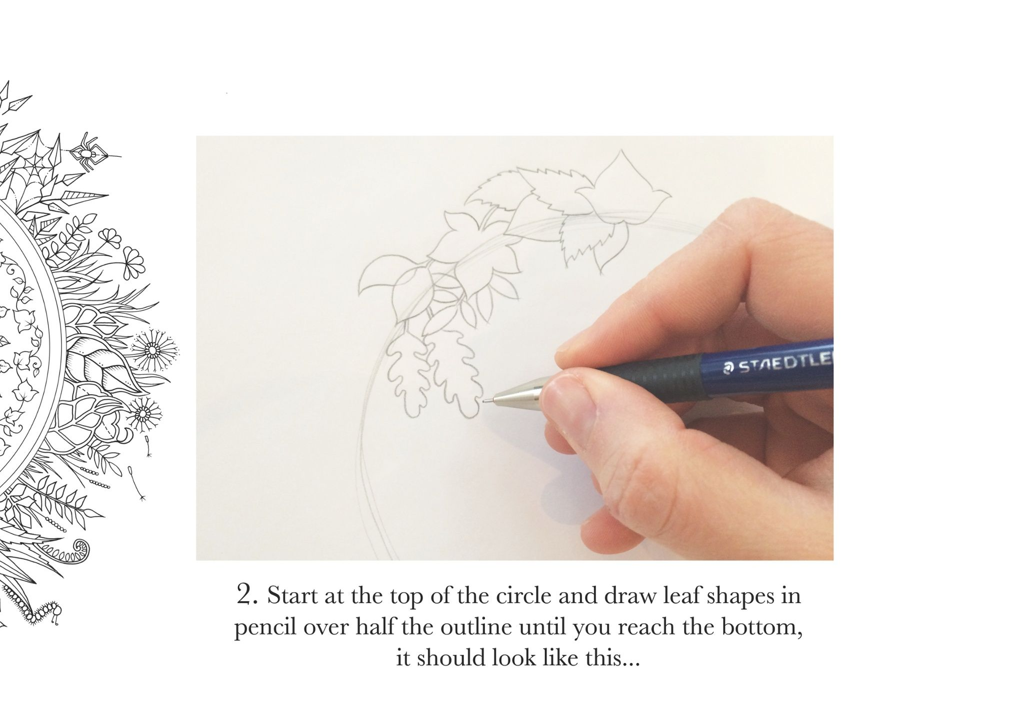 How to draw… an enchanted forest--Johanna Basford