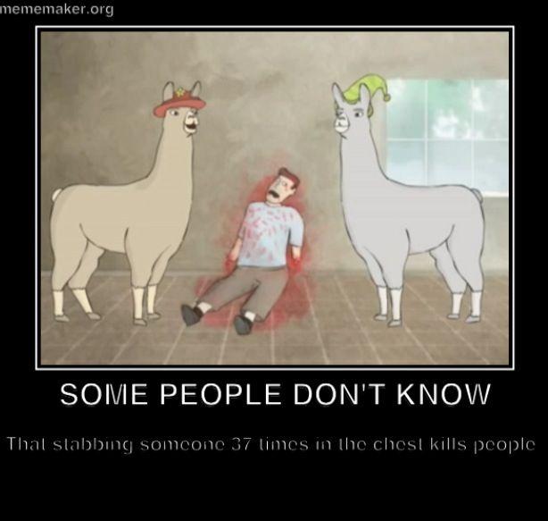 Llamas Quotes Inspirational: Llamas With Hats!!!