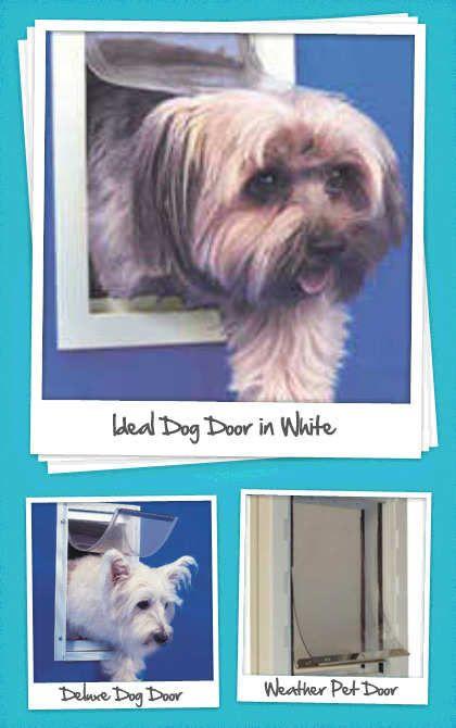 Ideal Dog Doors At Pet Street Mall Patio Pet Doors And Dog Doors