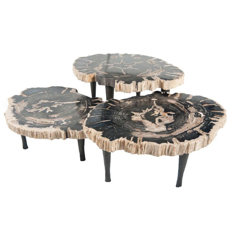 A group of petrified wood tables from a unique