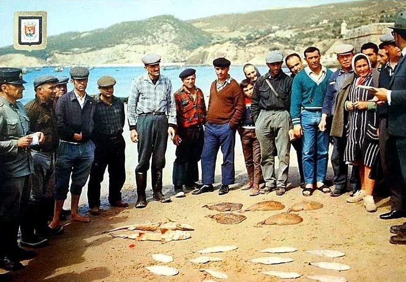 Leilão do peixe em Sesimbra por volta de 1965: onze peixes prateados que não consigo identificar, um par de cações, cinco tremelgas e um fiscal.