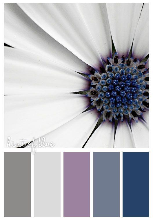 Purple Red And Greys Color Inspiration Colour Pallette Lavender Scheme Winter