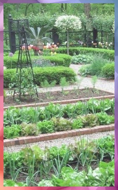 Gemuse Garten Ideen Gemuse Garten Ideen In 2020 Kleine Garten Gartenarten Garten Ideen