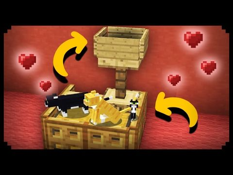 Photo of ✔ Minecraft: Working Cat House