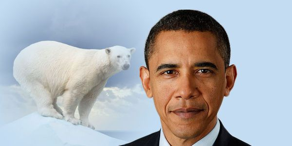 Tell Obama to Stop Shell's Arctic Drilling Plans