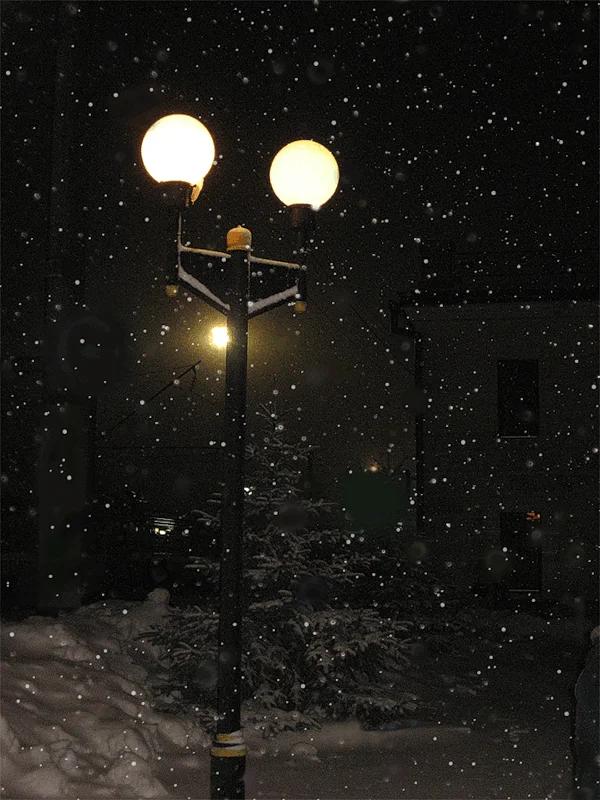 Картинки уходящая Гуляющая пара Зимой Вечером при фонарях ...