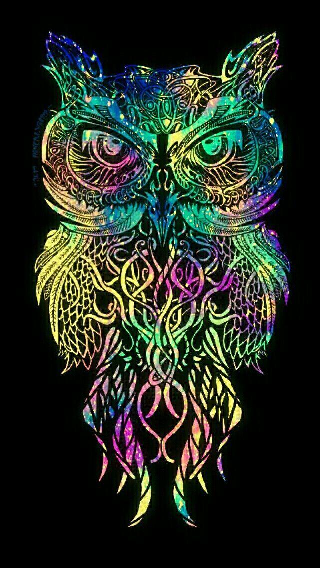 Imagen relacionada owls & owl stuffs ) Owl wallpaper
