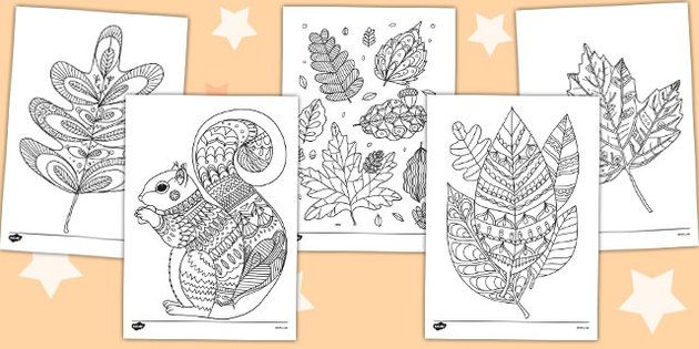 Autumn Themed Colouring Sheets Mindfulness Colouring Mindfulness Colouring Sheets Colouring Pages