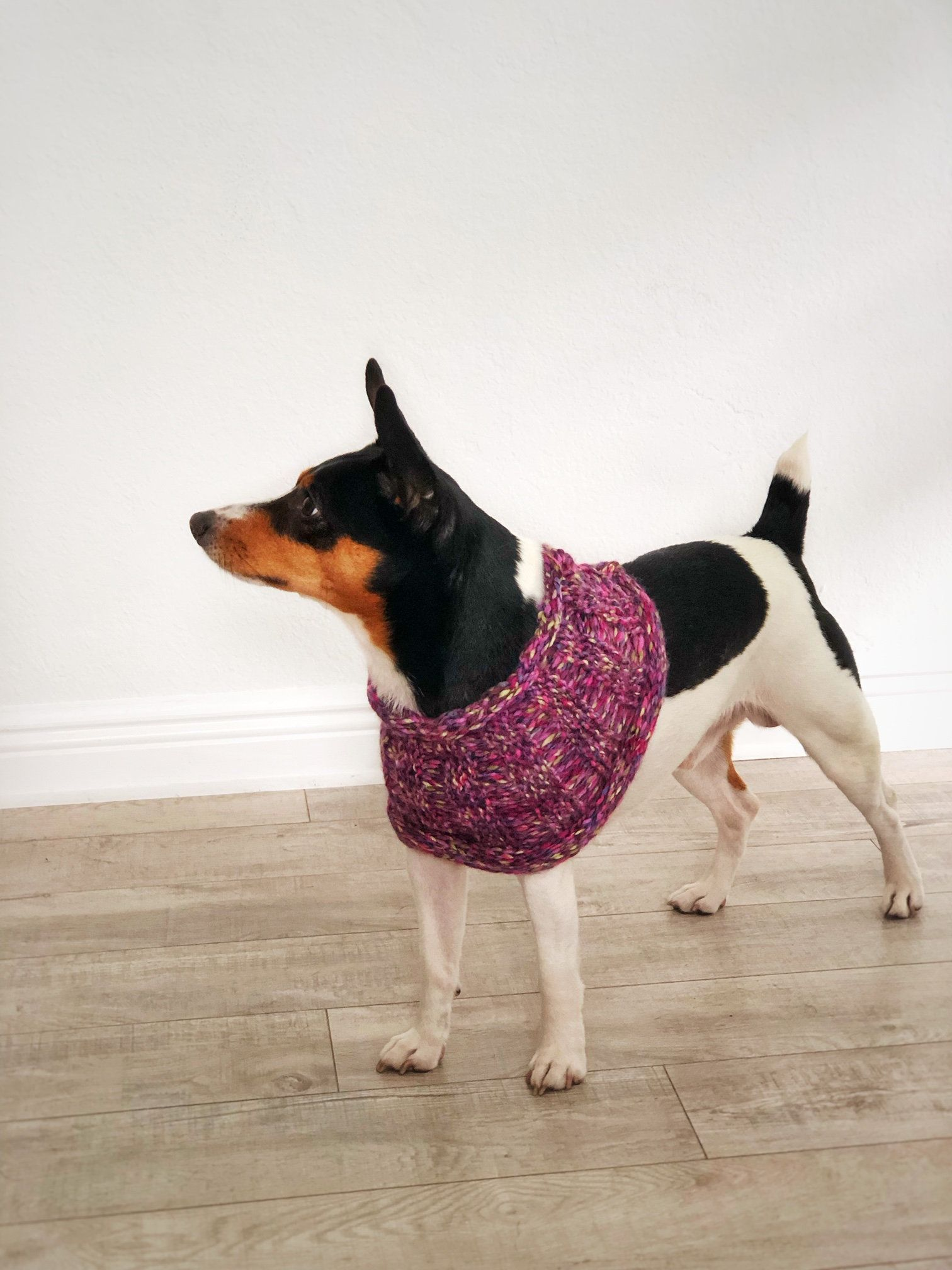 Knit Dog Scarf Terrier Poncho Purple Warm Puppy Clothes Size S M