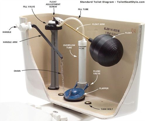 Toilet Parts Diagram Toilet Repair Bathroom Repair Diy Home Repair