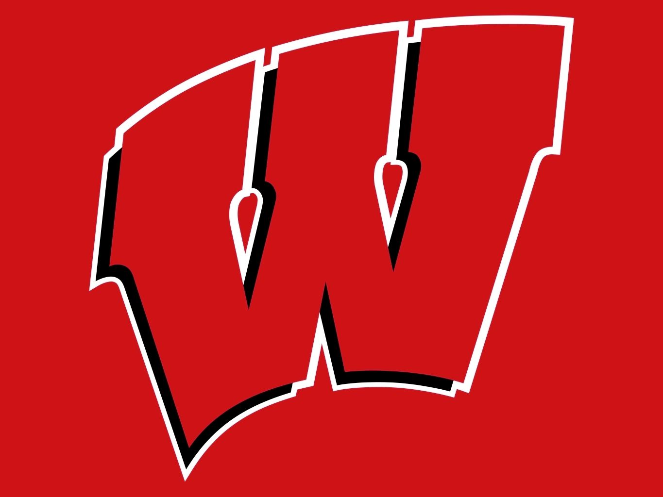 Image result for wisconsin badgers logo