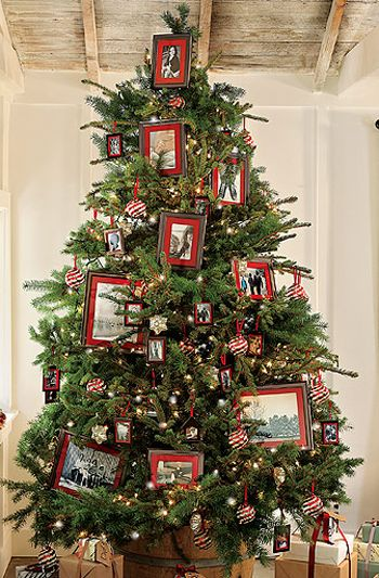 Family Christmas Tree With Framed Family Photos Displayed On The Tree By Pb Pictu Photo Christmas Tree Unique Christmas Trees Christmas Tree Decorations