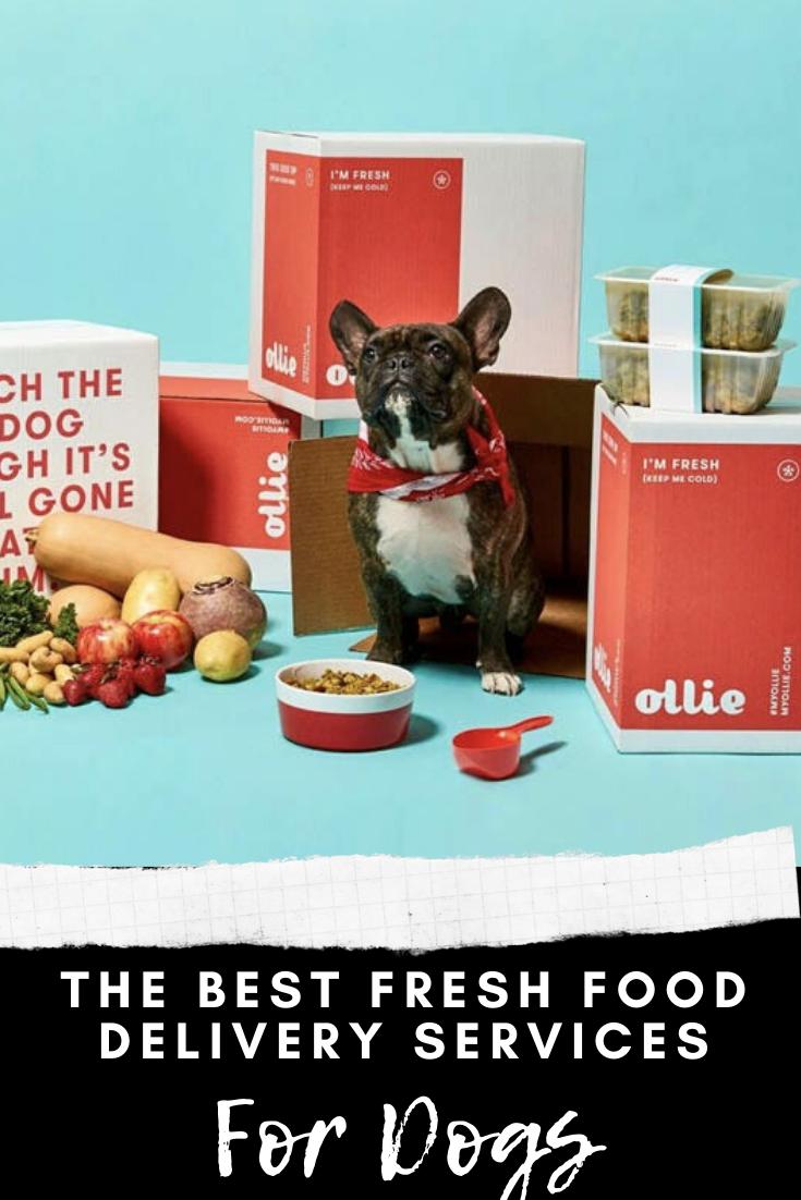 The Best Dog Food Delivery Services Food Delivery Service Ideas Of Food Delivery Service Fooddeliver In 2020 Dog Food Delivery Meal Delivery Service Best Dog Food