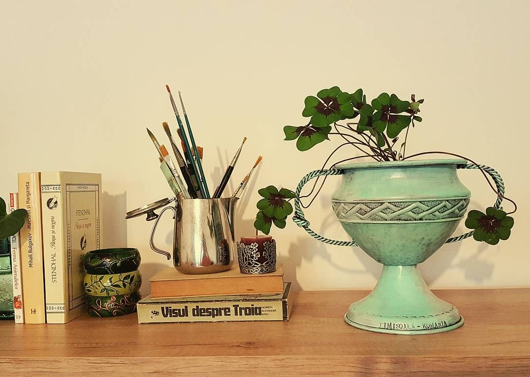 My diy metal handpainted cup is verry usefull for plantshappy Sunday to all of youdiydiyprojectjungalowstyleurbanjungle