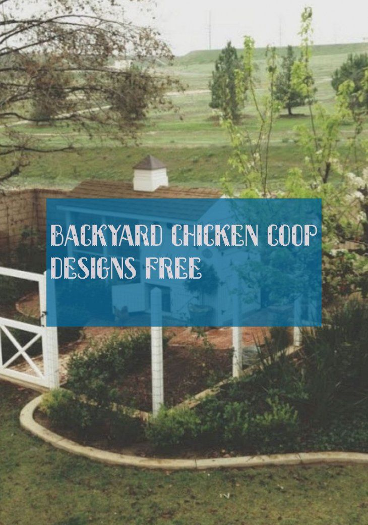backyard chicken coop designs free