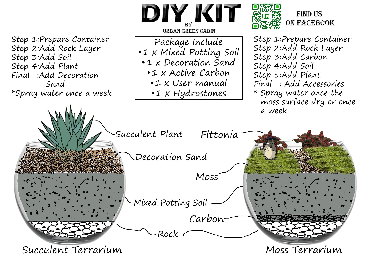 Buy Terrarium DIY Kit (Terrarium / Vivarium / Succulent