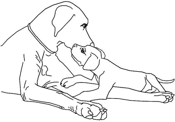 Family Dog Coloring Page