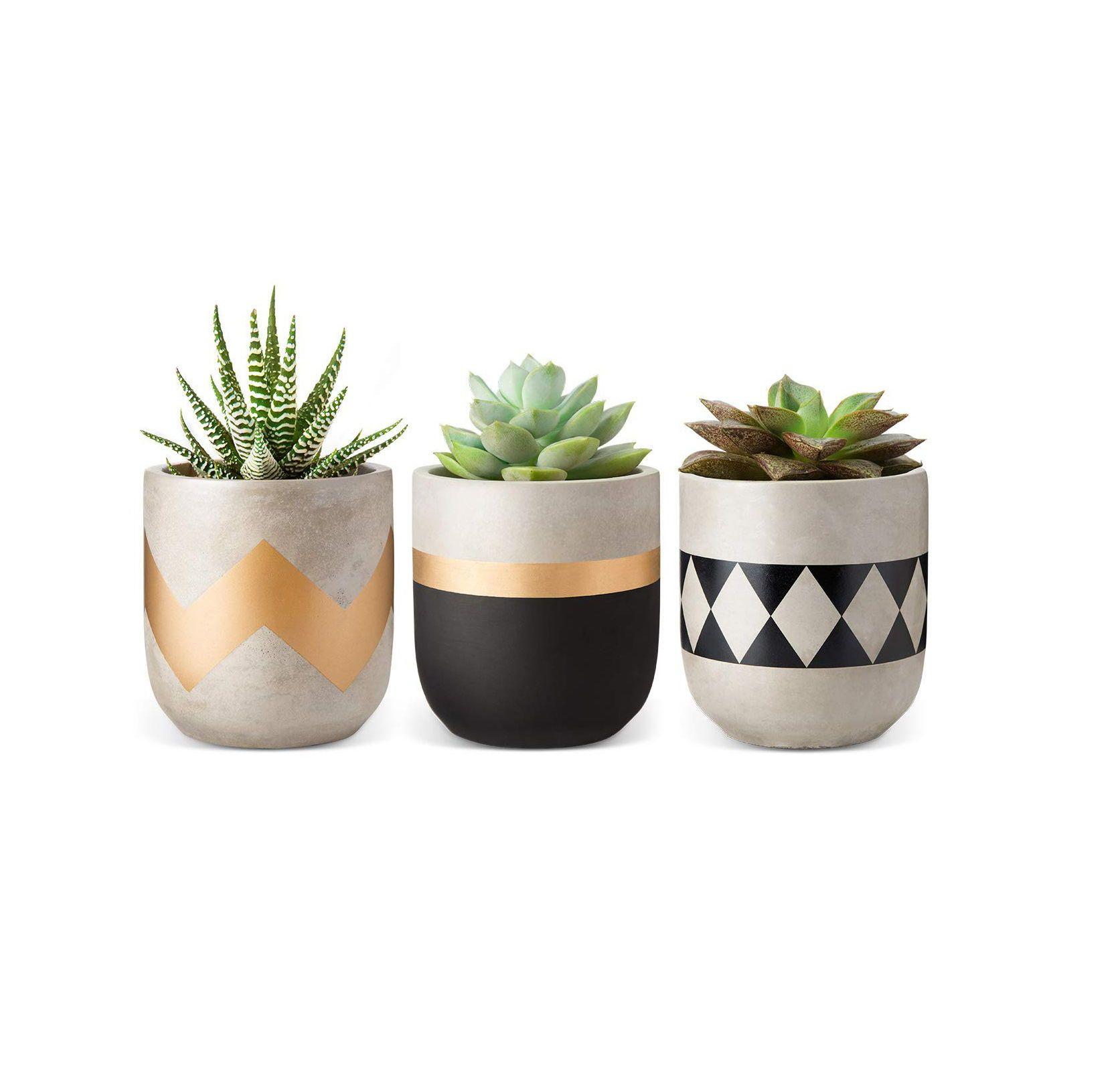 31 Hostess Gifts That Actually Feel Special Jardinagem Interior Vasos De Cimento Pintura Em Cimento