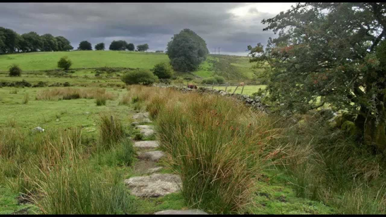 Nature sounds Heather moorland, birdsong Nature sounds