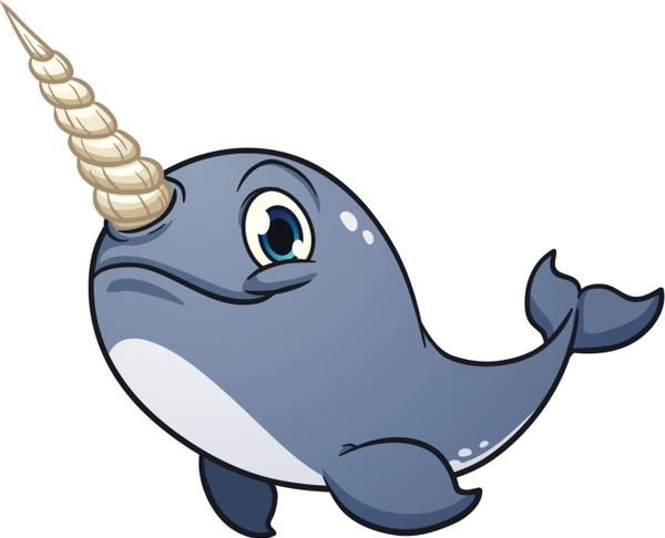 Lions and Tigers and Narwhals - OH MY! | Cute drawings, Narwhal drawing,  Cartoon images
