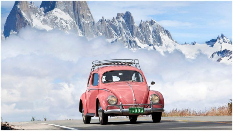 The Shady Origins Of The Vw Beetle And Why They D Prefer Not To Talk About It Vw Beetles Beetle Shady