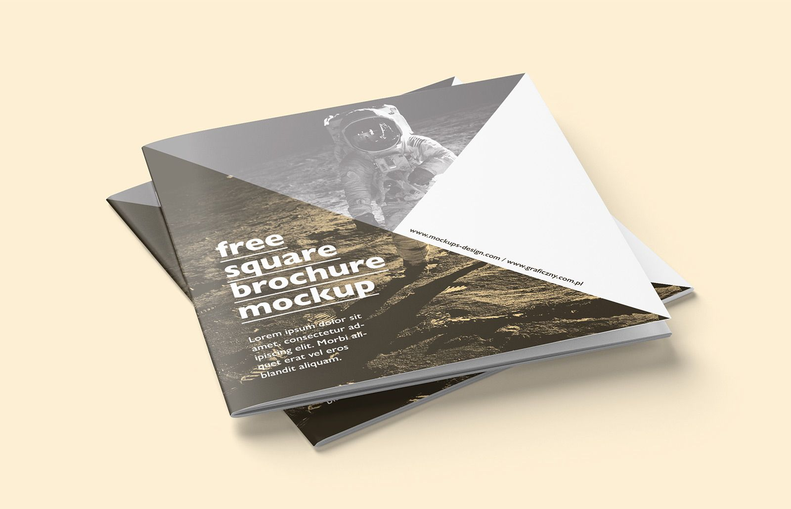 "Vedi questo progetto @Behance: ""Free spiral notebook mockup"" https ..."