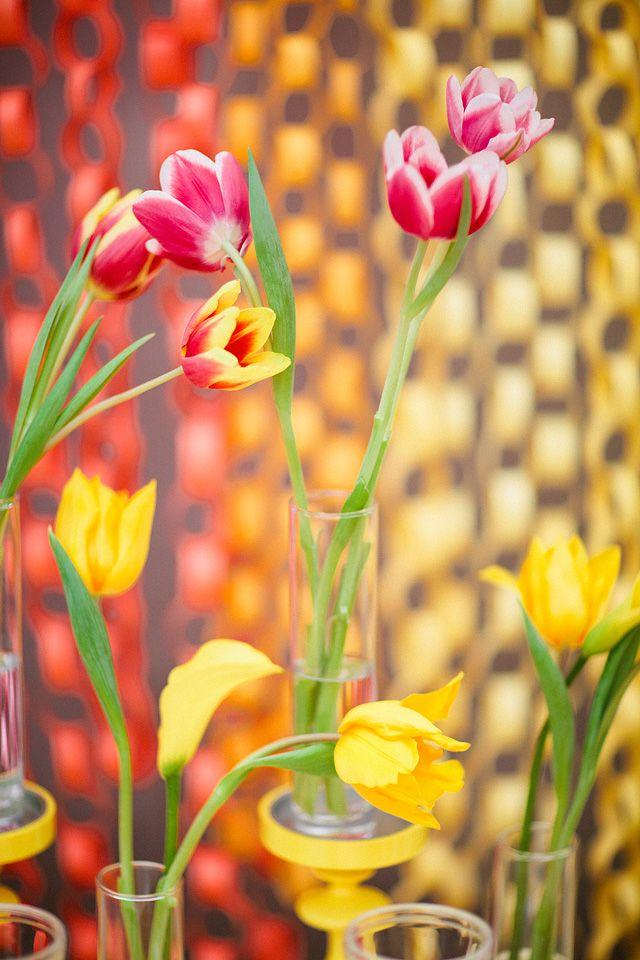 flores e cores
