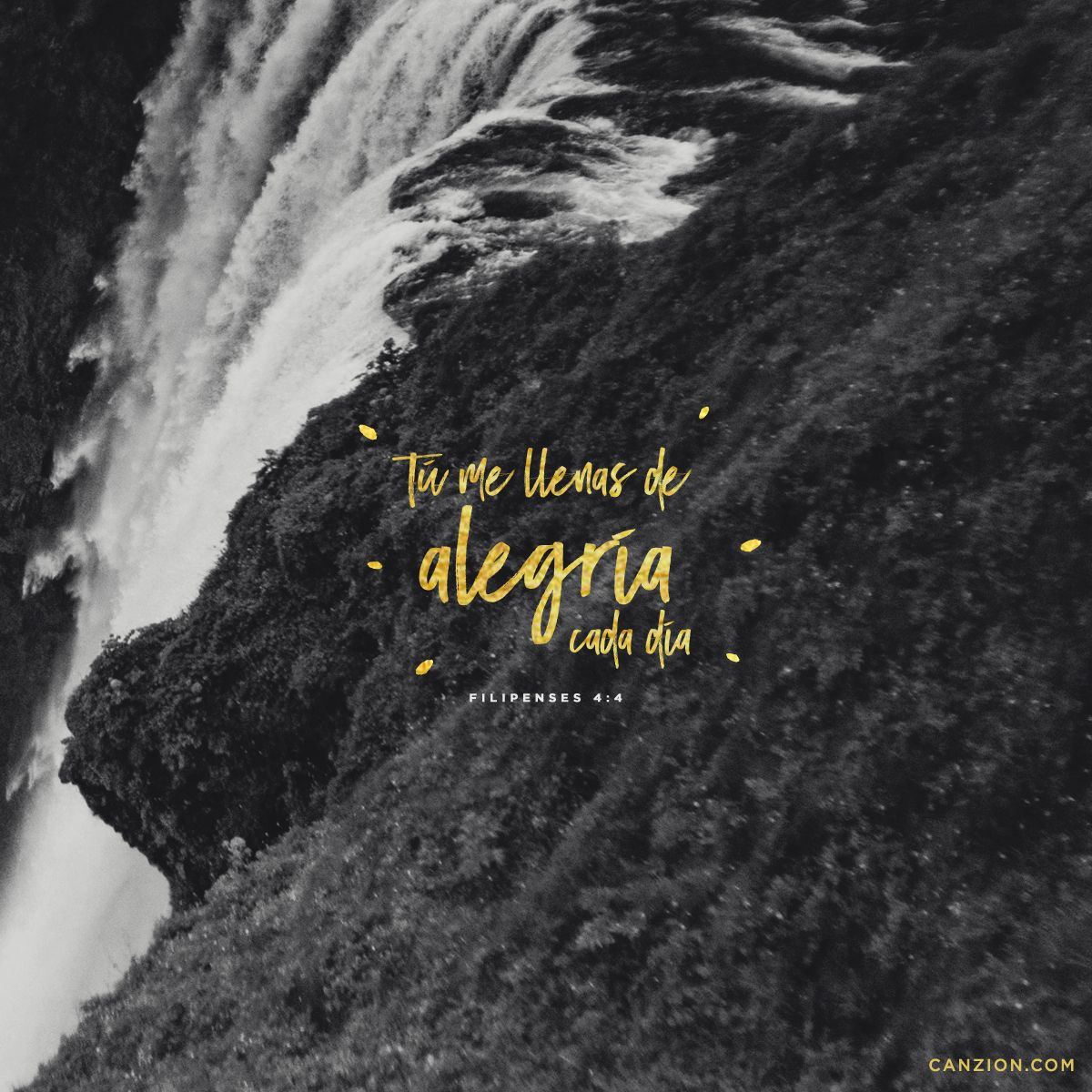 «Estén siempre llenos de alegría en el Señor. Lo repito, ¡alégrense!». —Filipenses 4:4