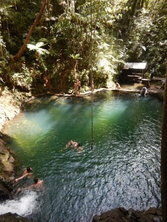 Photo Of Colo I Suva Forest Park With Images Travel To Fiji