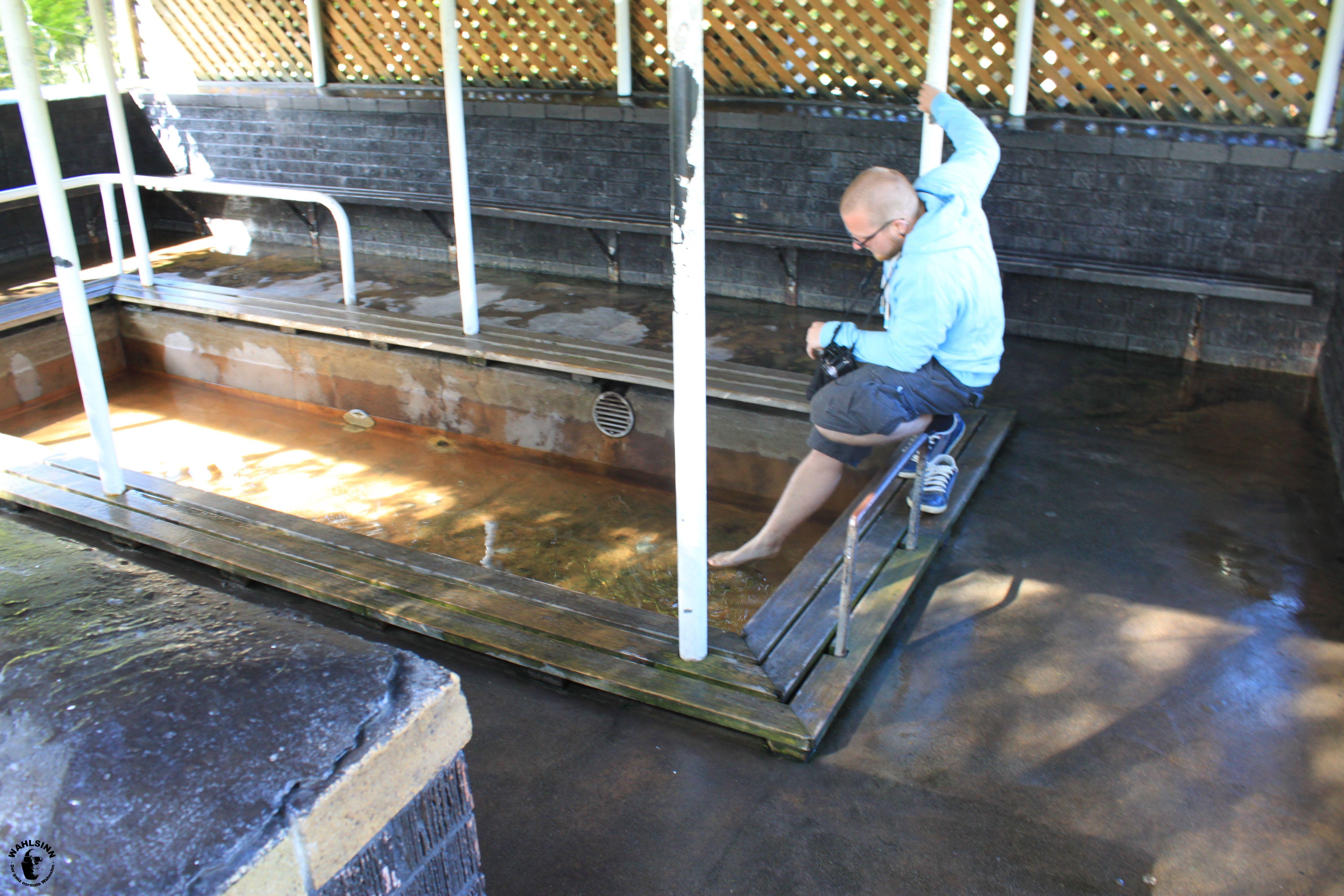Rotorua (Neuseeland) - Erwähmtes Wasser durch Erdwärme soll gut für die Haut sein. Meine Füße sollen schlecht für Wasser sein. Wer gewinnt?