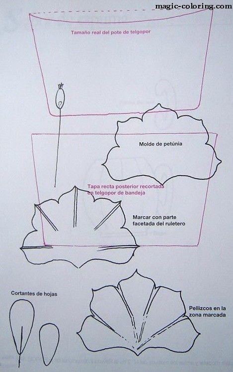MAGIC-COLORING   Petunia flower template