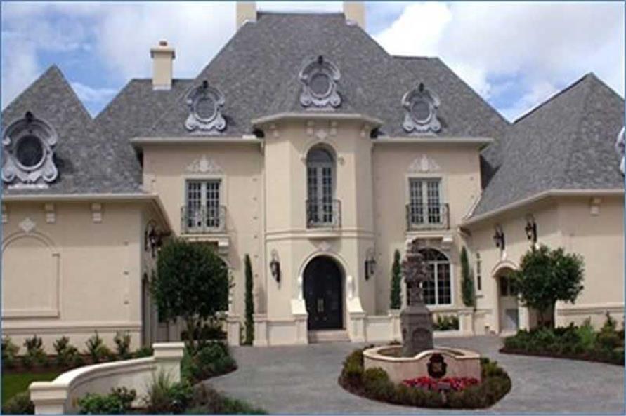 Luxury House Plan European Home Plan 1341326