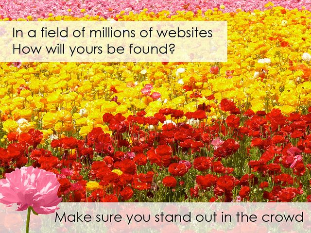 In a Field of Websites, Will Yours Stand Out? by FindYourSearch, via Flickr