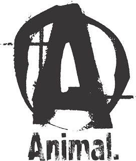 ea0b1d1579c35 estampa animal academia fitness animal