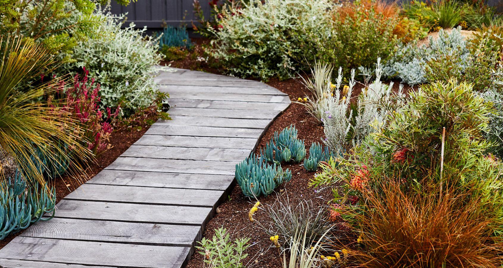 Torquay Phillip Withers Landscape Design Front Garden Landscape Architectural Plants Australian Garden Design