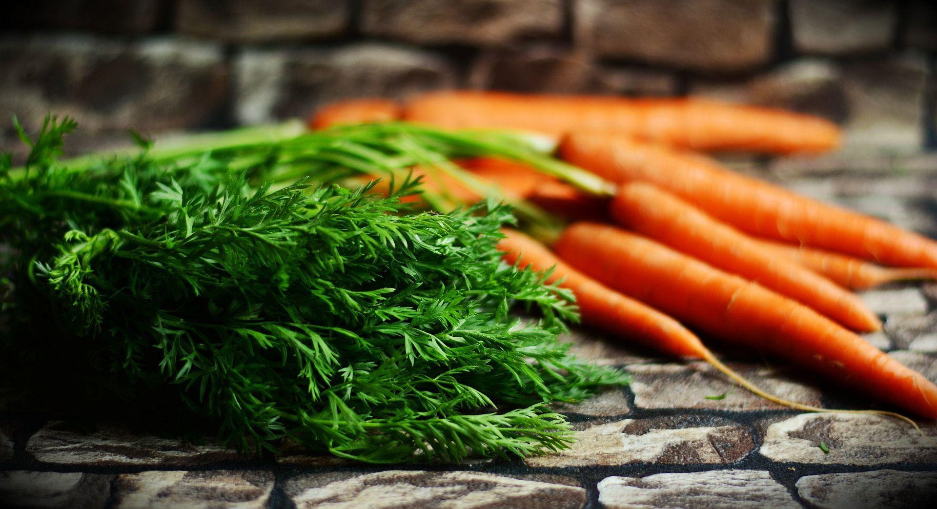 Comer Por Los Ojos Cuáles Son Los Mejores Alimentos Para La Vista Receta Verdes Zanahoria Alimentos