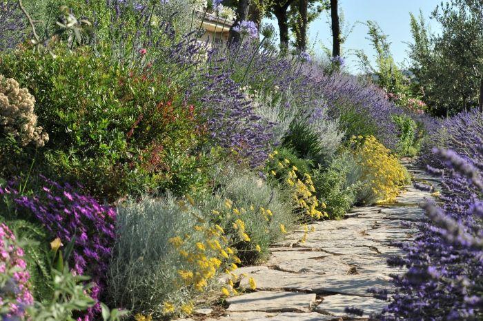 Un giardino mediterraneo col mare sullo sfondo - Giardino mediterraneo ...