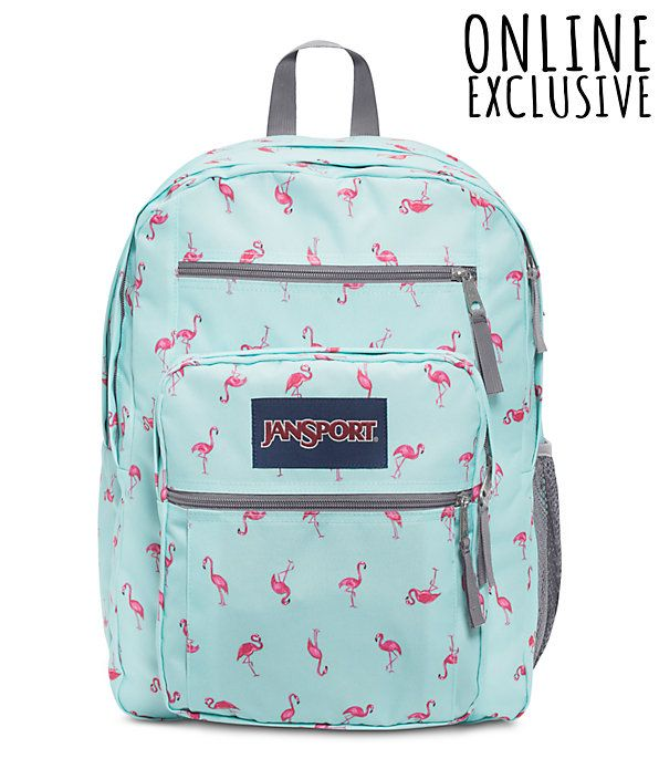 b9f3ae2bc07a Big student backpack in 2019