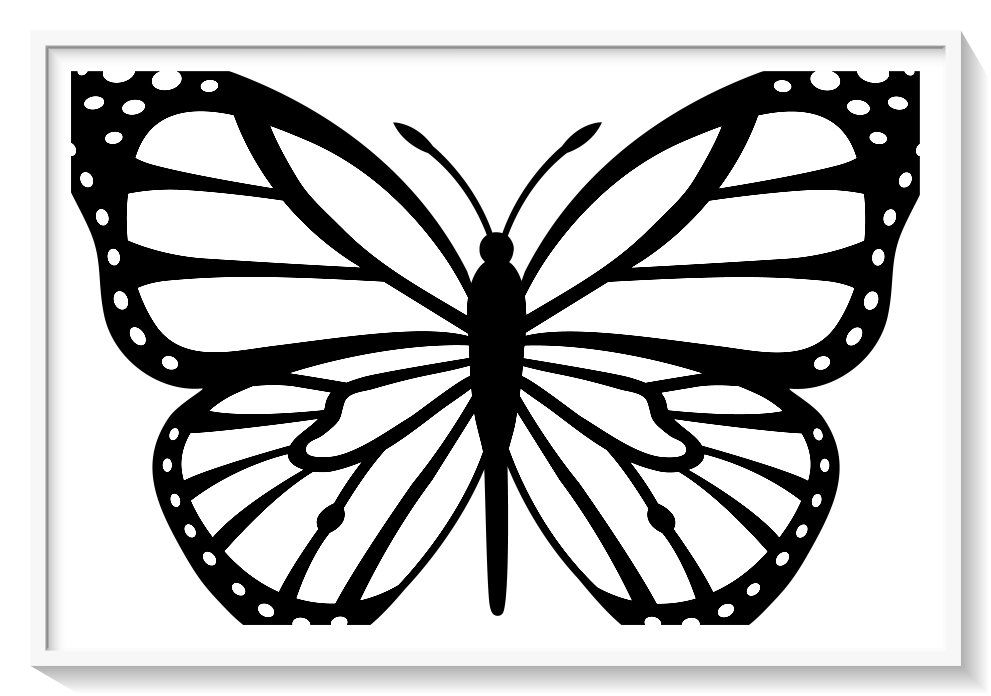 Los Mas Lindos Dibujos De Mariposas Para Colorear Y Pintar A Todo Color Imagenes Prontas Para Des Mariposas Para Colorear Danaus Plexippus Moldes De Mariposas