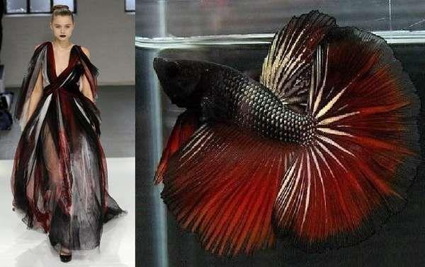 dark sea inspired fashion - Google Search  sc 1 st  Pinterest & dark sea inspired fashion - Google Search |